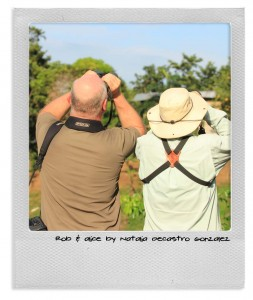 Bird Watching Panama