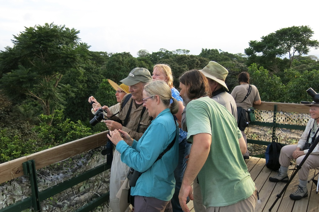Birding Group at Tranquilo Bay