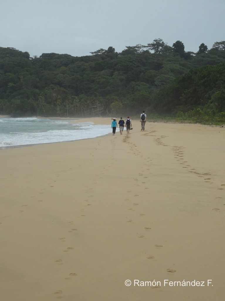 Beach Hiking Panama